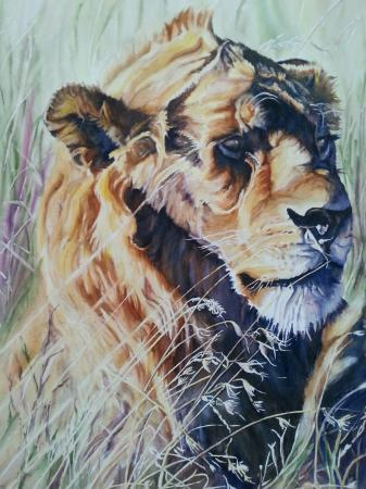 Sue Matthews, Serengeti Sentinel, Honorable Mention IV