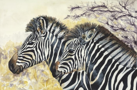 Martine Callebaut, Mothers Day Zebra